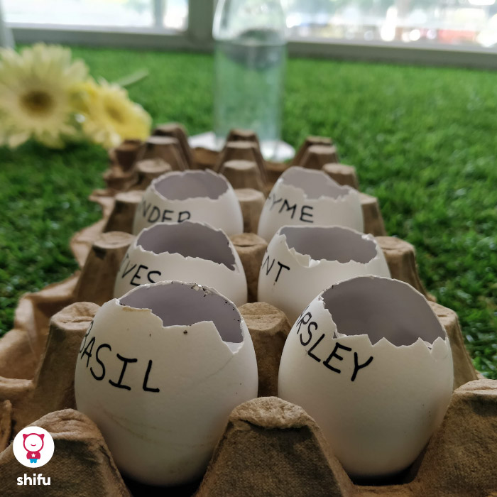 DIY-eggshell-garden-kids-summer-activity