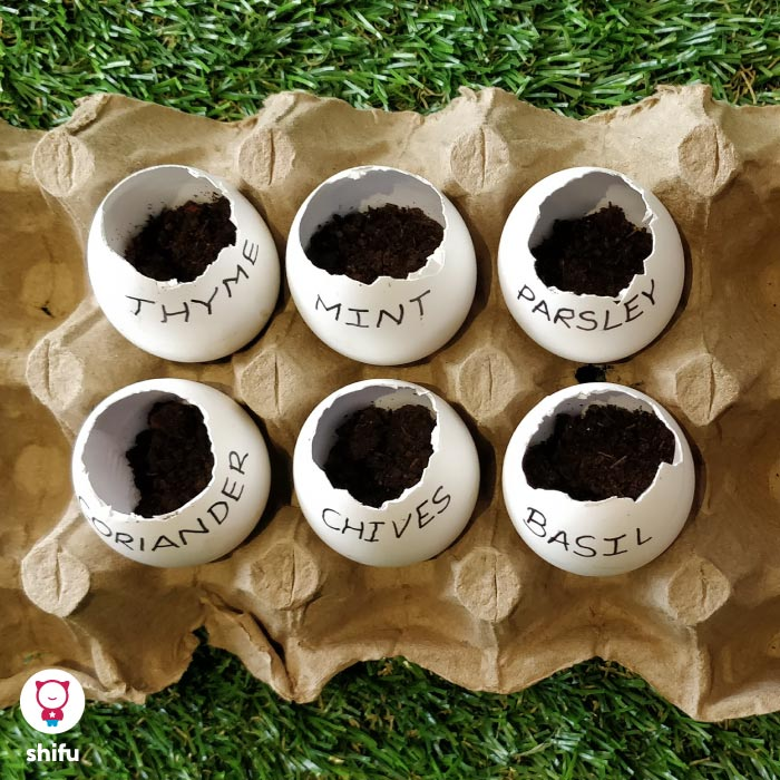 DIY-eggshell-garden-summer-activity-for-kids