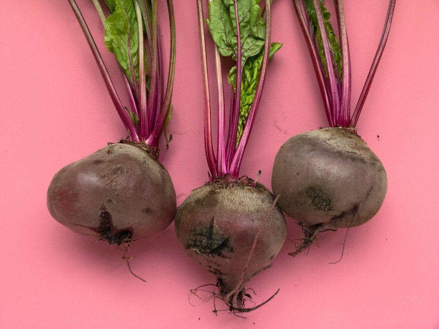 beets in a pink background